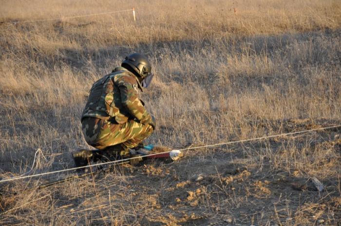 210 minas despejadas en áreas liberadas -  FOTOS