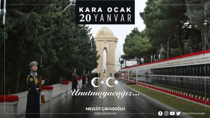 """""""Şəhidlərin simvolu olan qərənfillər Xarı bülbüllə birlikdə açır"""" -  Çavuşoğlu"""