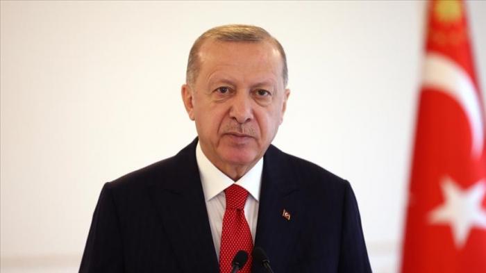 أردوغان يهاتف قبطان سفينة تركية تعرضت لهجوم قراصنة