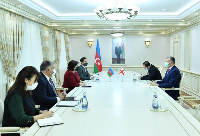 Speaker of Azerbaijani parliament, Georgian ambassador exchange views over prospects for development of ties
