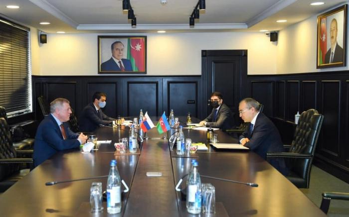 Azerbaijan and Slovakia discuss investment initiatives