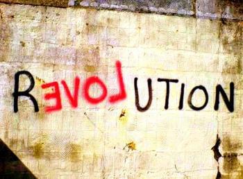 Evolution, Not Revolution, in Economics -   OPINION