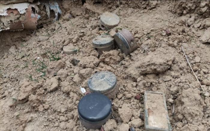 Laçın polisi Üçtəpədə minalar aşkarladı -    FOTO