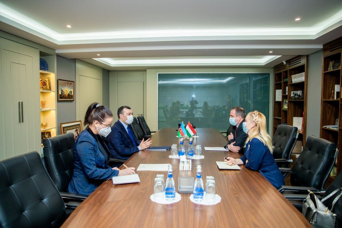 Hungarian companies ready to participate in restoration of liberated Azerbaijani lands