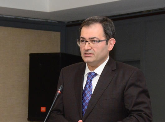 Deputy Minister talks about activity related to revival of Nagorno-Karabakh region