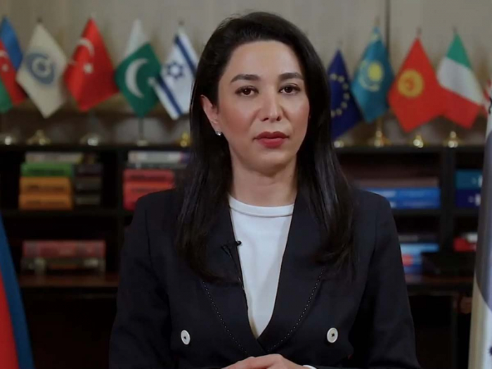 Azerbaijani ombudsman makes statement on 29th anniversary of Khojaly genocide -  VIDEO