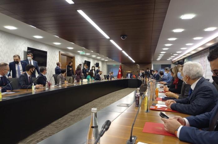 La première Commission culturelle Azerbaïdjan-Turquie tient une réunion à Ankara