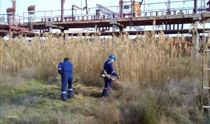 Dövlət Yanğın Nəzarəti Xidməti təhlükəsizlik tədbirlərini davam etdirir -  VİDEO