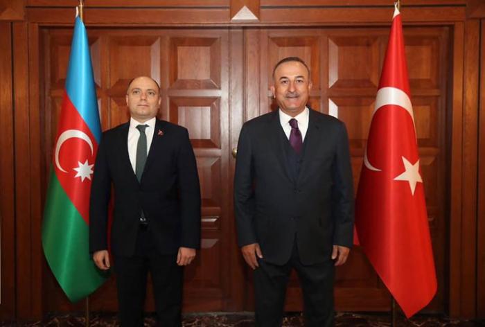 Le ministre turc des Affaires étrangères a rencontré le ministre azerbaïdjanais de la Culture