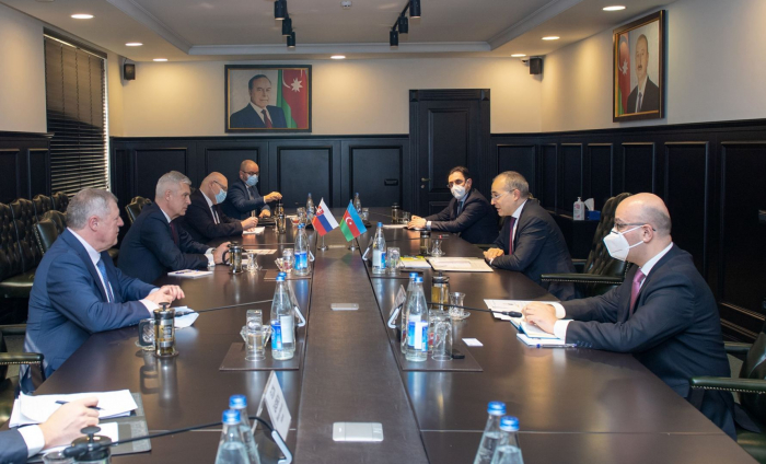 Azerbaijan, Slovakia discuss expansion of economic ties