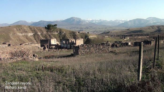 Zəngilanın Baharlı kəndinin görüntüləri -    VİDEO