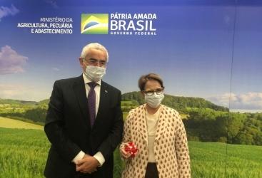 Se discutieron las relaciones entre Azerbaiyán y Brasil en el campo de la agricultura