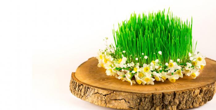 Azerbaijan celebrates Last Tuesday of Novruz Holiday