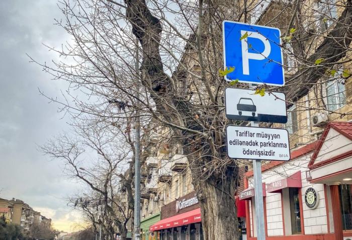 """""""Hamı üçün parklanma yeri salmaq qeyri-mümkündür"""""""
