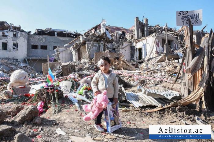 Azerbaijani and foreign NGOs prepare report on Armenia's crimes