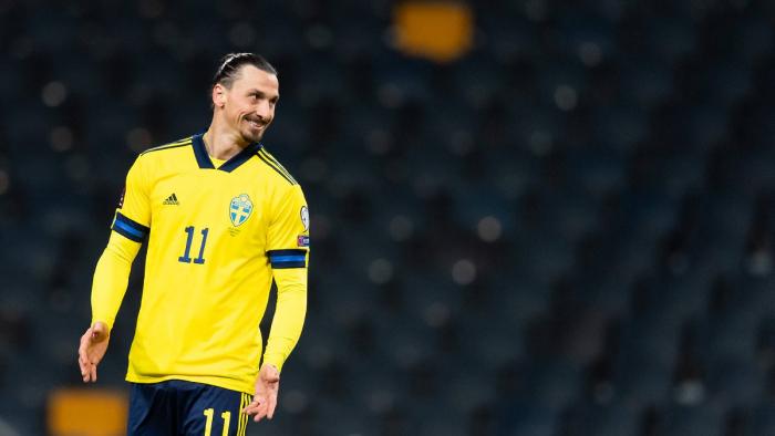 Ibrahimović soll eingesperrten Löwen getötet und Haut und Schädel nach Schweden importiert haben