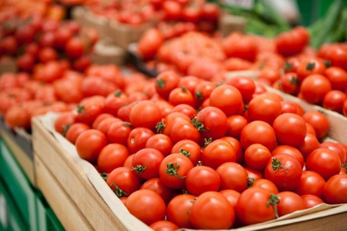96 müəssisənin Rusiyaya pomidor ixracına icazə verildi
