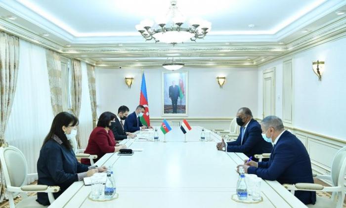 Azerbaijani parliament speaker meets with Egyptian ambassador