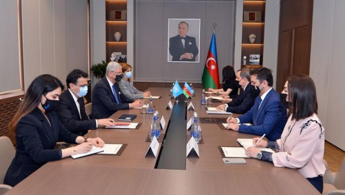 Le chef de la diplomatieazerbaïdjanaise informe Volkan Bozkir de la menace des mines -  PHOTOS