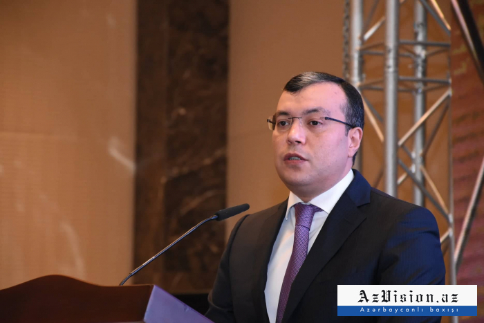 Azerbaijani state to provide all families of martyrs with social benefits – minister