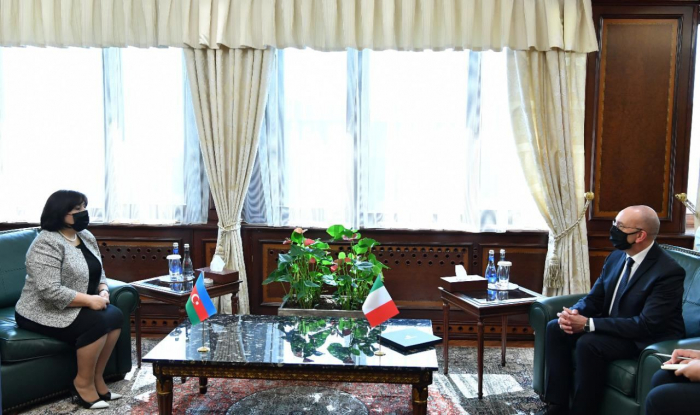 Azerbaijani parliament speaker, Italian official discuss development of cooperation