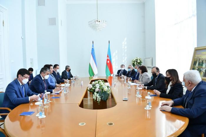 Sahiba Gafarova:  Aserbaidschan und Usbekistan machen in allen Bereichen Fortschritte