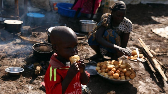 Over 100 million people in Africa face food insecurity, report says