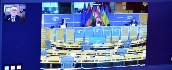 Azerbaijani MPs attend Euronest PA's online plenary meeting