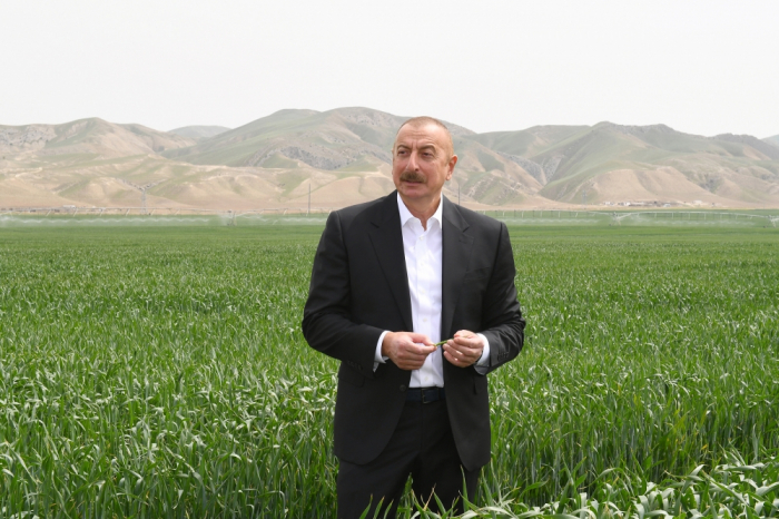 President Aliyev attends presentation of agropark in Hajigabul - PHOTOS