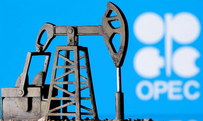 OPEC+ keeps oil demand forecast, but worried by COVID surge