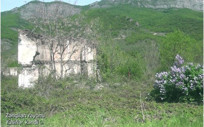 Yusiflar village of Azerbaijan's Zangilan district –   VIDEO