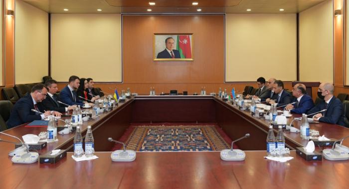 Azerbaijan and Ukraine discuss cooperation in cargo transportation