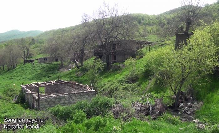 Zəngilanın Nəcəflər kəndinin görüntüləri -    VİDEO