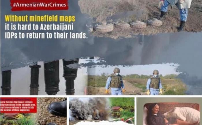 """""""Ermənilərin soyqırımı iddiaları əsassızdır"""" -   Dostluq Mərkəzi bəyanat yaydı"""
