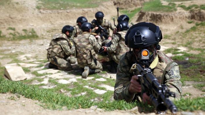 Friedenssicherungseinheiten halten Trainingsübungen ab -   VIDEO