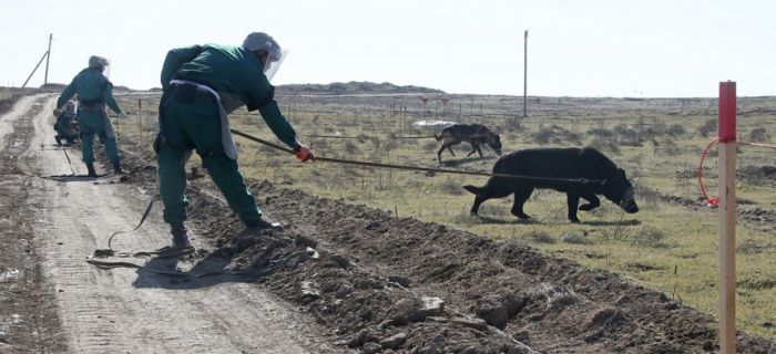 Biden must press Armenia to hand over minefield maps -   OPINION