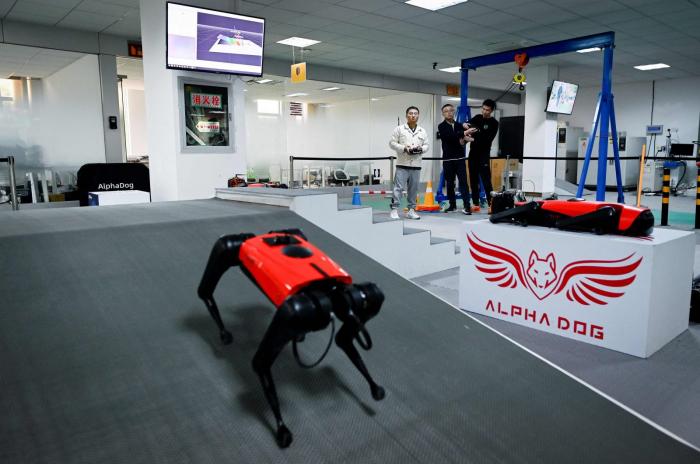 Meet the AlphaDog: Chinese company develops robo-dogs