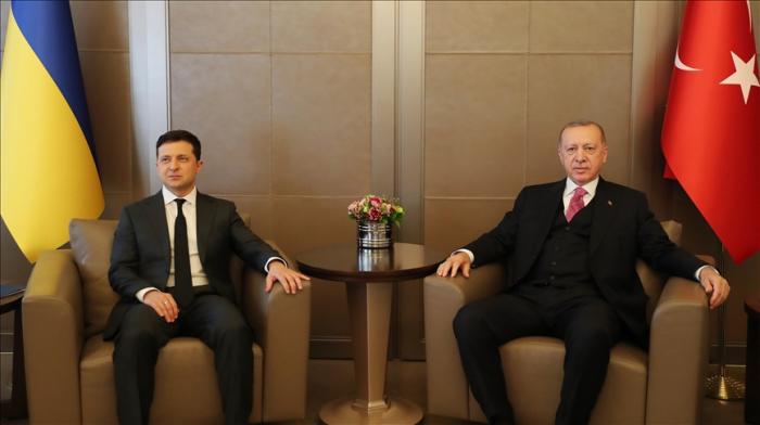 لقاء بين أردوغان وزيلينسكي -   صور