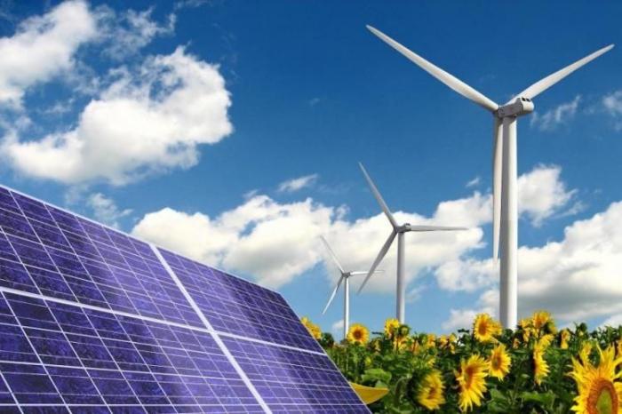 """Azad edilmiş ərazilərdə """"yaşıl enerji"""" zonası yaradılacaq"""