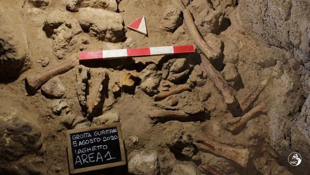 Les restes de neuf Néandertaliens découvertsdans une grotte en Italie