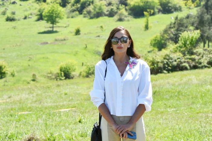 Mehriban Aliyeva comparte una publicación desde Karabaj