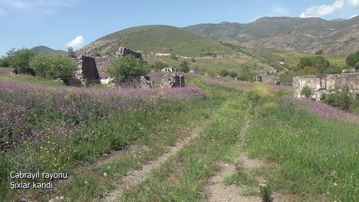 Azerbaijani MoD releases new   video   from Jabrayil