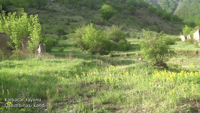 Azerbaijan MoD shares new   video   from Kalbajar district
