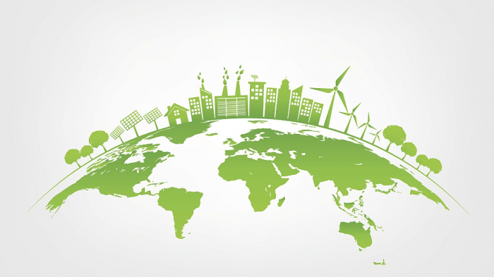 Mapping the Path to Carbon Neutrality -   OPINION