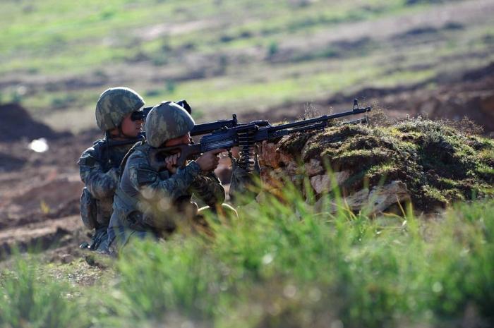 Turkey neutralizes 11 PKK terrorists in northern Iraq