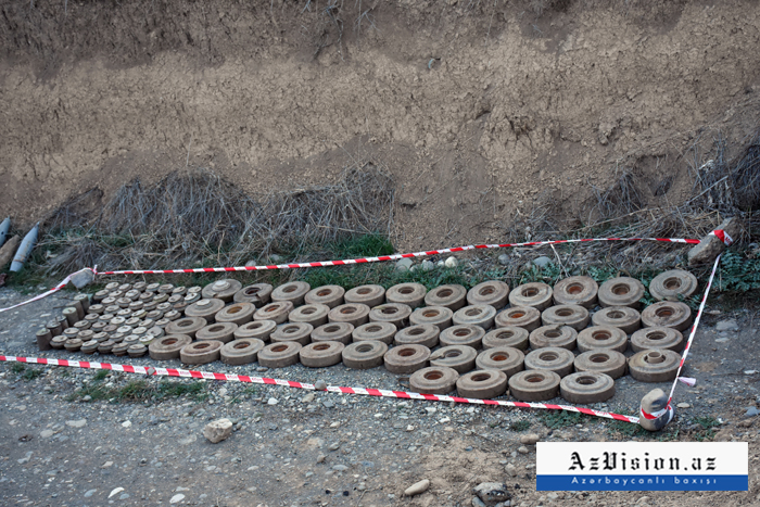 Azerbaijan detects 104 mines in its liberated lands