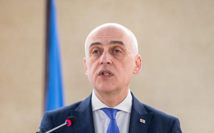 """""""زيارة غاريبشفيلي لأذربيجان كانت مفيدة للغاية"""" - وزير الخارجية"""