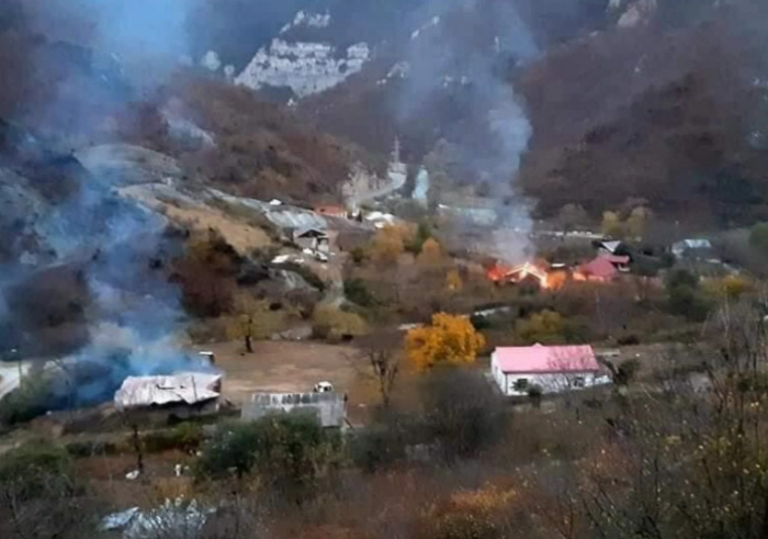 In memory of burning bees; Azerbaijan invests in rebuilding nature -   OPINION
