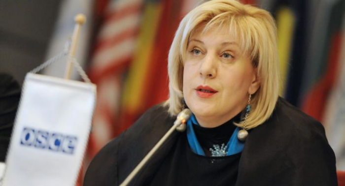 Dunya Miyatoviç ərazilərin minalardan təmizlənməsi ilə bağlı çağırış etdi