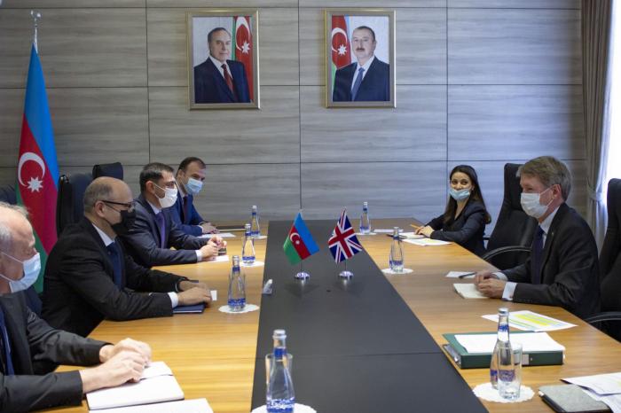 Aserbaidschan und Großbritannien diskutieren über Zusammenarbeit im Energiesektor